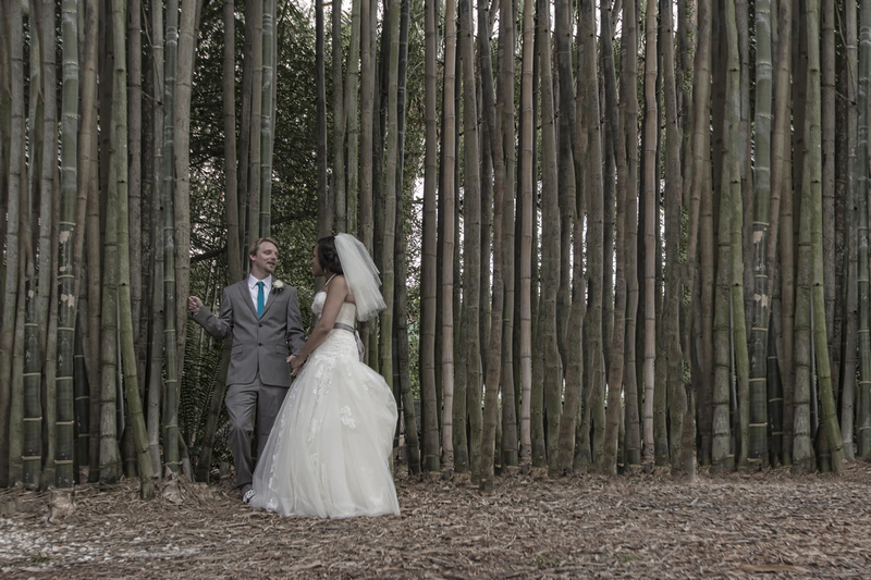 Tampa Wedding Photographs